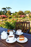 Garden Tea Royalty Free Stock Images