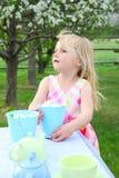 Garden tea Royalty Free Stock Photos