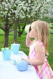 Garden tea Stock Images
