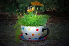Garden Tea Party Royalty Free Stock Photography