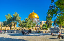 The garden on the Temple Mount Royalty Free Stock Image