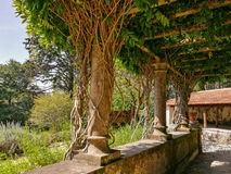 Garden Terrace with branches. In Sintra Portugal Royalty Free Stock Photography