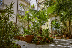 Garden with terracotta pots Royalty Free Stock Photography
