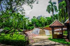 Garden in Thailand Chatuchak 45. Public park garden flower tree travel Thailand Asia Asian view royalty free stock photos
