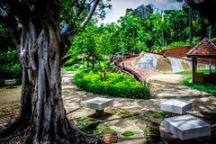 Garden in Thailand Chatuchak 46. Public park Royalty Free Stock Photography