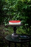 In the garden there is a wooden antique table, on it on a wooden stand the curd cranberry cake, curd cake with cranberries royalty free stock images