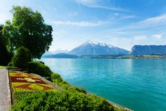 Garden, Thun lake and Swiss mountains Royalty Free Stock Photography