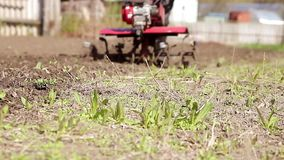 The garden tiller to work close up, walk-behind tractor stock footage