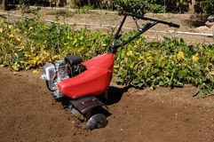Garden tiller to work, orchard. Orchard,Garden tiller to work stock photo