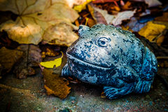 Garden Toad Figure Royalty Free Stock Photos