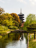 Garden of Toji temple with blue sky, Kyoto, Japan Stock Images