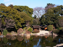 Garden in Tokyo National Museum. Japanese style Royalty Free Stock Image