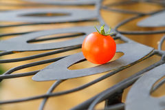 Garden tomato Stock Photography