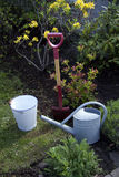 Garden tools. Spade, bucket and water can in flower bed Royalty Free Stock Photography