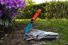 Garden tools. Lying on gass law Royalty Free Stock Photography