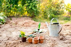 Garden tools, flower pots and watering can in the garden. Stock Image