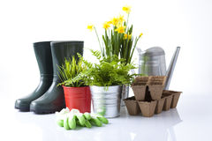 Garden tools and garden flowers Royalty Free Stock Photo