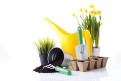 Garden tools and garden flowers Royalty Free Stock Photos
