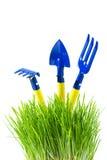 Garden tools in  green grass Royalty Free Stock Photos