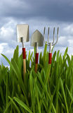 Garden tools in green grass Royalty Free Stock Photography