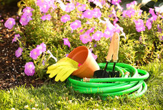 Garden tools on green grass in garden with Stock Photo