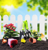 Garden tools on the ground Royalty Free Stock Images