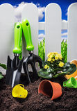 Garden tools on the ground Royalty Free Stock Photography