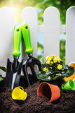 Garden tools on the ground Stock Image