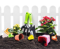 Garden tools on the ground isolated Stock Image