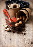 Garden tools, ground ,   plant the bulbs for planting Stock Images