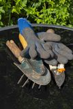 Garden tools including fork, trowel secateurs and gloves reflected on a glass patio table with royalty free stock photos