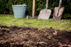 Garden tools. Old lawn digging Stock Image
