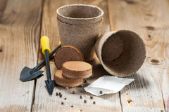 Garden tools, peat pots and seeds on wooden background Stock Images