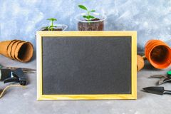 Garden tools and pots on a gray concrete background. Chalk board. Top view, copy space. Garden tools and pots on a gray concrete background. Chalk board. Top royalty free stock images
