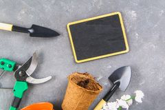 Garden tools and pots on a gray concrete background. Chalk board. Top view, copy space. Garden tools and pots on a gray concrete background. Chalk board. Top stock image