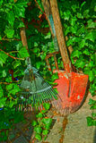 Garden tools, rakes and spade and rambling ivy Royalty Free Stock Photos