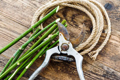 Garden tools and rope on the wooden table. Stock Photos