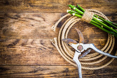Garden tools and rope on the wooden table. Stock Photography