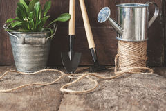 Garden tools, shovel, rake, watering can, bucket, tablets for pl Stock Photography