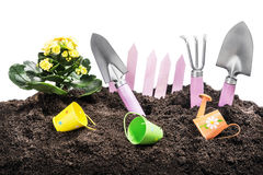 Garden tools in soil isolated Stock Images