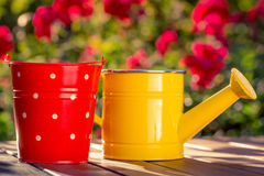 Garden tools. Watering can and bucket against spring background Royalty Free Stock Image