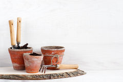 Garden tools on the white wooden shelf stock image