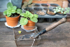 Garden tools in the wire basket with plant pot background Stock Images