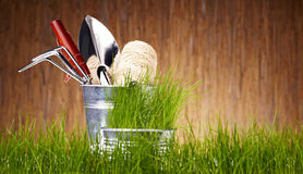 Garden tools on wooden wall Royalty Free Stock Images