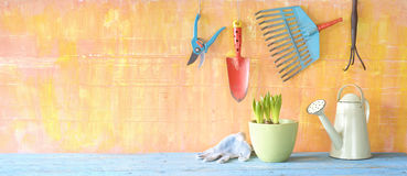 Garden tools, young plant. Gardening tools, young plant,gardening in the springtime, panoramic Stock Images