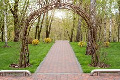 Garden with topiary landscape and arch. Landscaping in the park.  Stock Photography