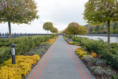 Garden with topiary landscape. Landscaping in the park Stock Photos