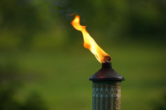 Garden torch flame Royalty Free Stock Photo