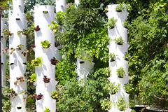 Garden Tower Sustainable Living Stock Photography