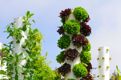 Garden Tower Sustainable Living Stock Image